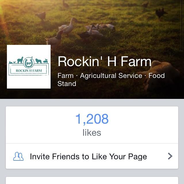RockinHFarm1200LikesGoal